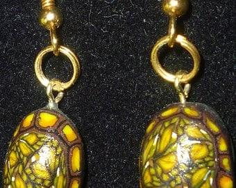 Box Turtle shell earrings