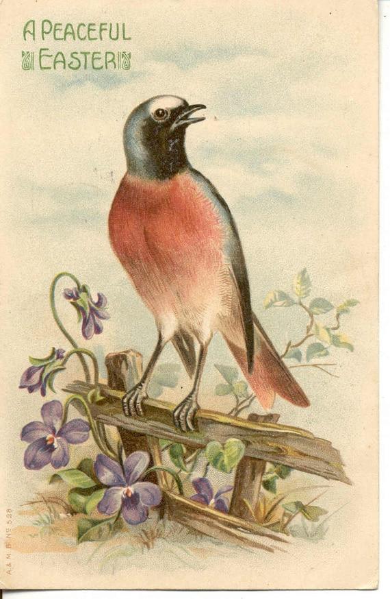 Vintage 1908 Easter post Card  Easter  bird