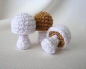 3 Baby Mushrooms