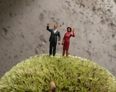 LAST ONE Teensy President Obama and First Lady for your plants.
