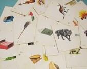 Vintage Educational Flash Cards - Set of 8 - Illustrations, Alphabet, Learning