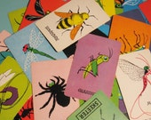 Vintage Skeeter Cards - Set of 8 - Insects, Bugs - LAST SET