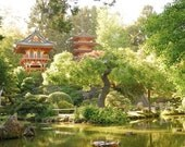Japanese Tea Garden, San Francisco (8.5x11 inch photograph)
