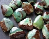 Bio Chrysoprase Nuggets - 20 - large smooth irregular shaped Organic nugget beads 22mm X 17mm