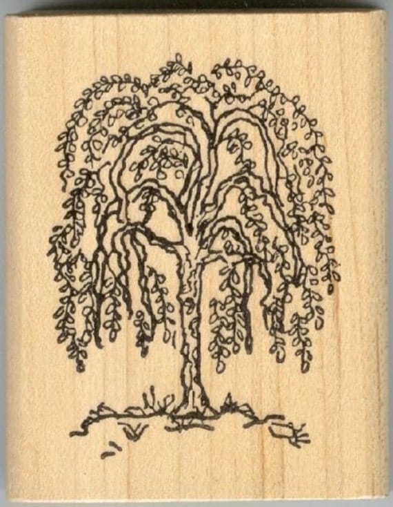 Weeping Willow Tree Black And White Tattoo Small Primitive...