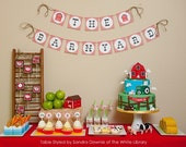 Farm Barnyard Birthday Party - PRINTABLE only