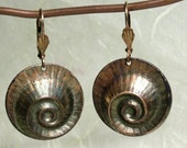 Reserved for Anita - Brass Nautilus Shell Earrings with Patina