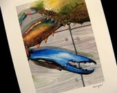 BIG Blue Crab Claw Watercolor 8x10 or 11X14 Beach Decor Delaware Maryland Chesapeake Bay Art Print by Barry Singer