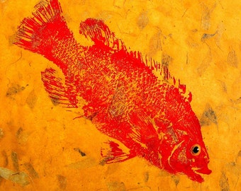 Salt Water Cunner 12 inch square Fish Rubbing (GYOTAKU) on hand made paper
