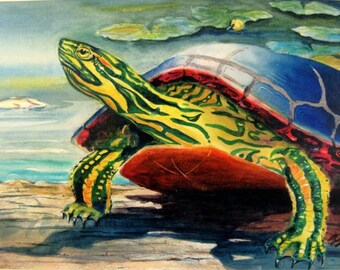 Painted Turtle on a Log cottage decor art print 8X10 or 11X14 by Barry Singer