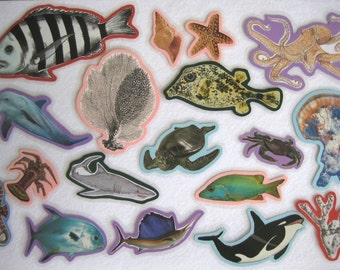 Ocean Animals Felt Board Set, Under The Sea Flannel Board Set, Science Felt Board Set, Homeschool Preschool, Teacher's Resource