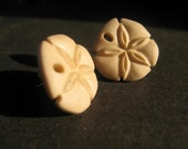 SALE sand dollar earrings