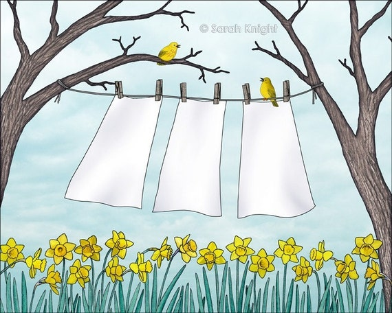 spring clean - signed digital illustration art print 8X10 inches by Sarah Knight, clothesline laundry art daffodils yellow warbler birds
