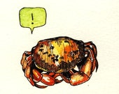 Exclaiming Crab