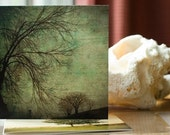 nature trees photo cards set-The Trees Collection - Set of 4 Handmade Photo Cards
