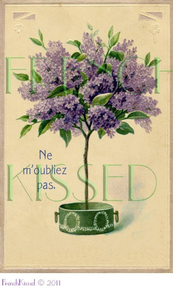DIGITAL scan LILACS topiary tree Antique FRENCH Don't Forget Postcard Romantic Cottage Wall Decor