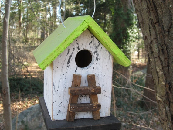 Chickadee Wren  Songbirds Primitive White Kiwi Green Black Tobacco Lath Ladder  Birdhouse New For 2012