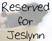RESERVED FOR JESLYNN - Teacup Kitten art photo print