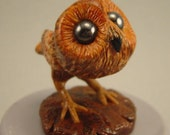 OOAK Baby Burrowing Owl