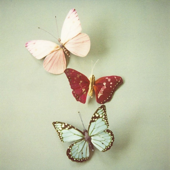 Butterfly photo, whimsical pastel butterfly photo, nursery decor, girls room decor, pastel blue, pink, butterfly gift - I'll Follow You