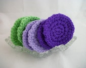 Six Dish Scrubbies,  the Iris Collection