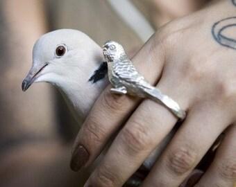 Silver Love Bird Knuckle Duster