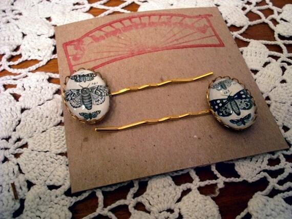 Vintage inspired Moth specimen engraving cameo hair pins