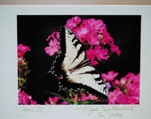 Flying Flowers Butterfly Greeting Note Cards Pack of two