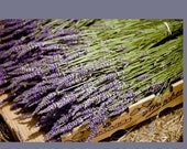 Custom Listing for Kristen  French Lavender Bouquet tied in love knots with Dark Royal Blue French wired ribbon