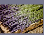 250 French Lavender Stems  Dried Flowers Wedding Decor Centerpiece Table Arrangement