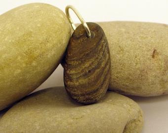 Brown Stromotoporoid Beach Stone Pendant