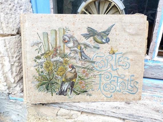 RESERVERD reserverd reserverd    Vintage 1900 /1910 Edwardian Postcard album with embossed birds & flowers cover empty for 480 cards