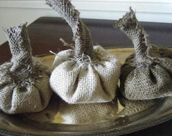 Autumnal Arts Series Baby Burlap Pumpkins