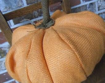Autumnal Arts Series Gathering Burlap Pumpkin Squash
