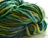 Chunky Mama superwash merino  hand dyed yarn in Neptune