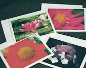 Original Note cards from Monets Garden