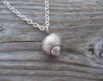 Sterling silver perriwinkle shell necklace