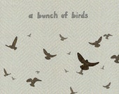a bunch of birds - limited edition print 1/100