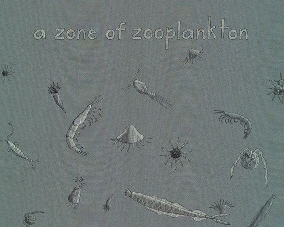 a zoo of zooplankton - limited edition print 3/100