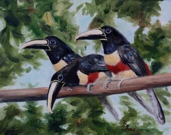 Toucan Bird Original 8x10 Oil Painting