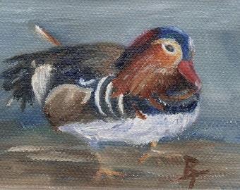 Mandarin Duck aceo Original 2.5x3.5 inch Oil Painting