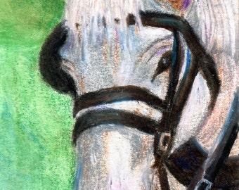 Horse Portrait ACEO Original 2.5x3.5 inch Painting