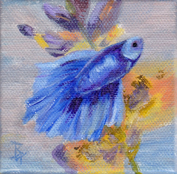 little blue betta fish original 3x3 inch painting by