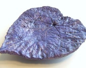 FREE SHIPPING SALE - Very Purple Morning Glory Leaf - heart shaped concrete impression