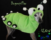 READY to ship- Glow in the Dark Dogerpillar Halloween Pet Costume-SMALL