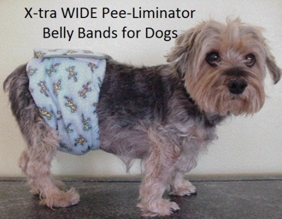 How To Make Your Own Belly Band For Dogs