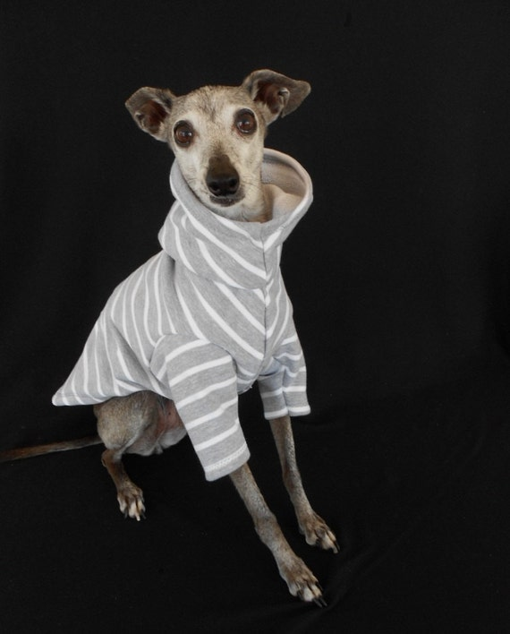 SMALL Grey and White Striped Organic Cotton Dog Hoodie-custom made for Italian greyhounds and small dogs
