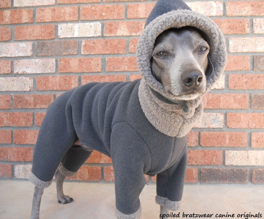 Custom Made Italian greyhound performance fleece body by Iggywear