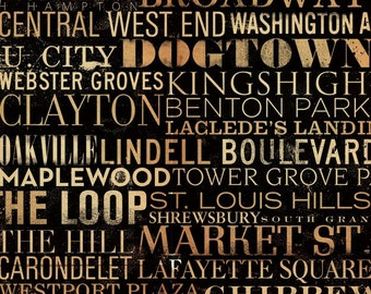 St. Louis Streets and Neighborhoods Canvas Art graphic art on canvas  by stephen fowler