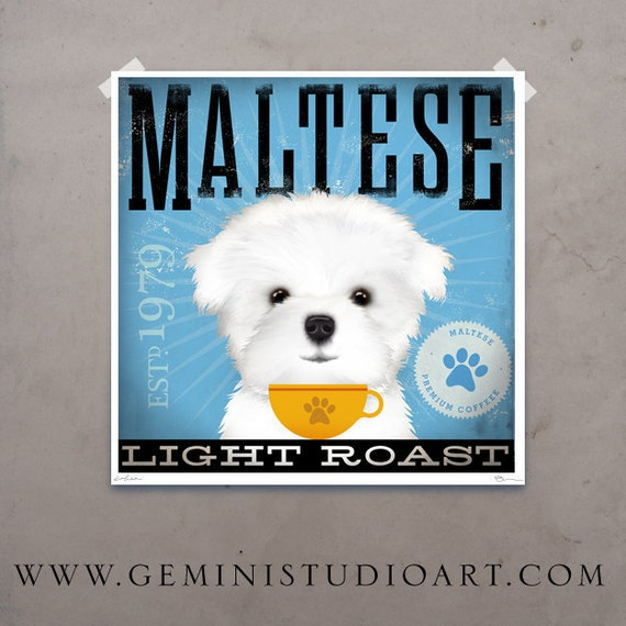 Maltese dog Coffee Company graphic artwork illustration signed archival artists print giclee by Stephen Fowler